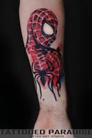 spider man by dopeindulgence