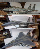 1:48 Scale F-15C  Model Restoration by lonewolf3878