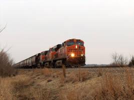 BNSF Grain Train by lonewolf3878