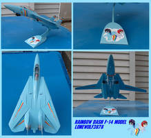 Rainbow Dash F-14 model: 1:72 scale by lonewolf3878