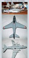 EA-6B Prowler Model: VAQ-140 Patriots by lonewolf3878