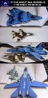 NLRAF F-14 and F-16 models by lonewolf3878
