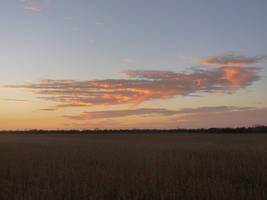 Streaks of Sunset by lonewolf3878
