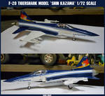 F-20 Tigershark Shin Kazama Model: 1:72 Scale