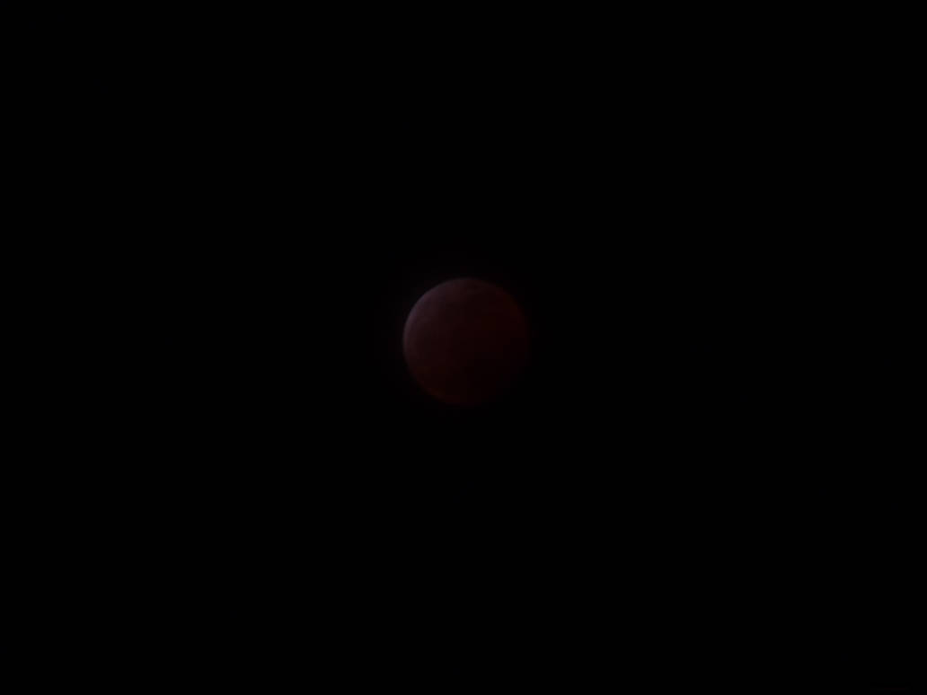 Super Blood Wolf Moon 2019: Start of Totality by lonewolf3878
