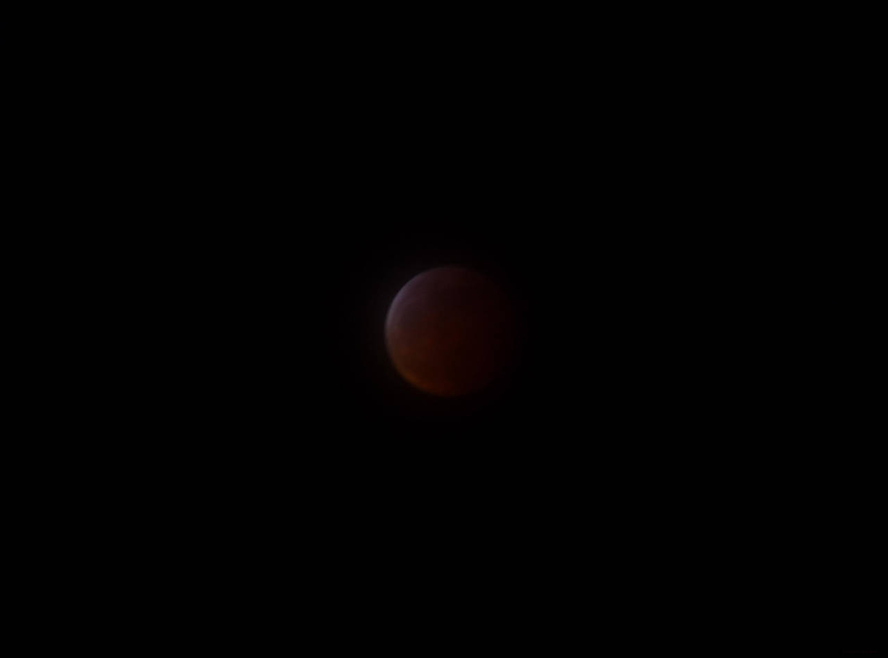 Super Blood Wolf Moon 2019: In the Middle by lonewolf3878