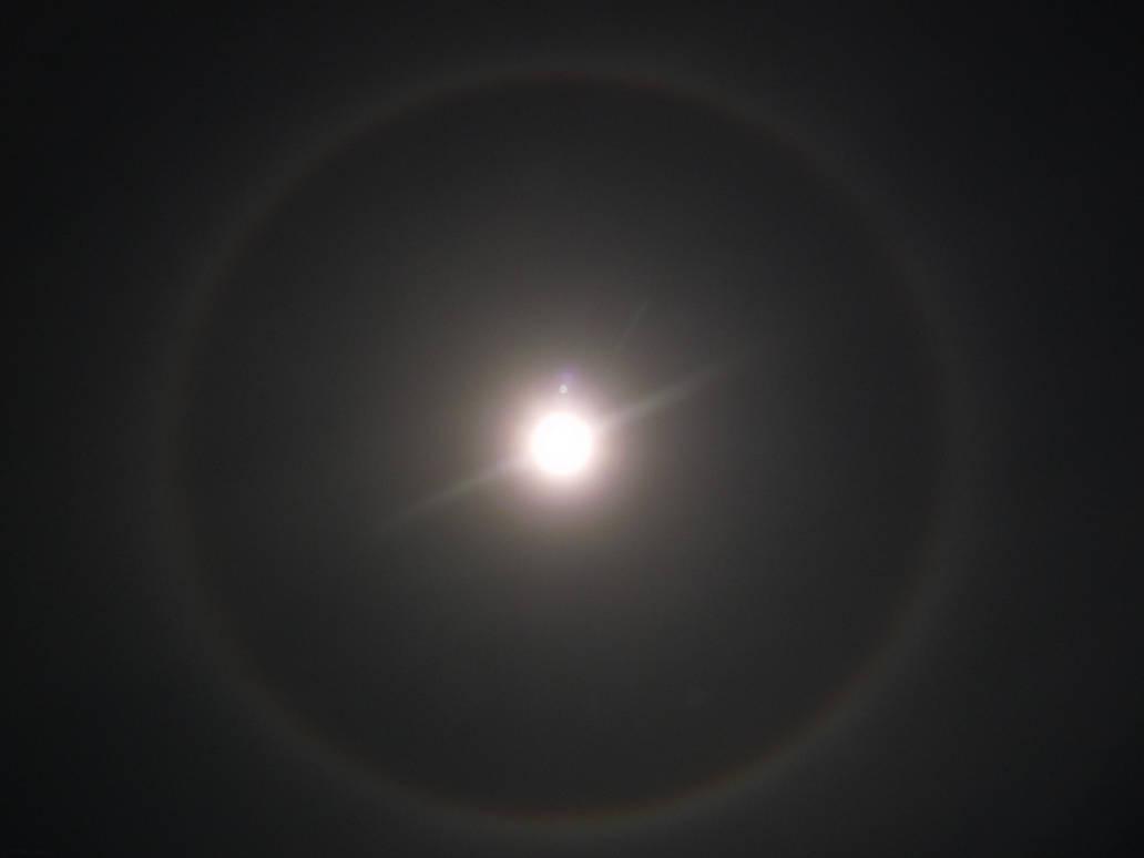 Super Blood Wolf Moon 2019: Bonus Shot by lonewolf3878