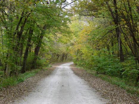 Railfan Trip: 10-24-18: Fall Road