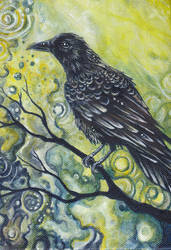 Color Crow by glait