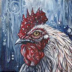 Rooster by glait