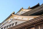 Osaka Castle at Dusk