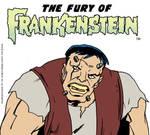 The Fury of Frankenstein