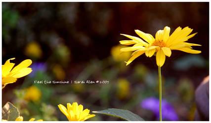 Feel the Sunshine by StarberryShortcake