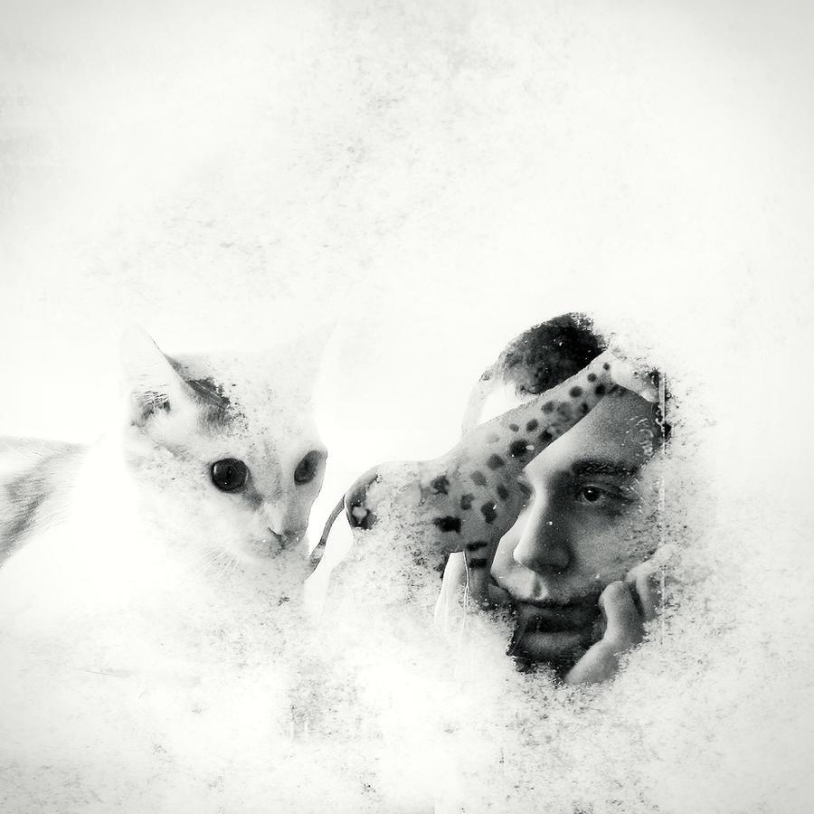 dear winter by KalbiCamdan