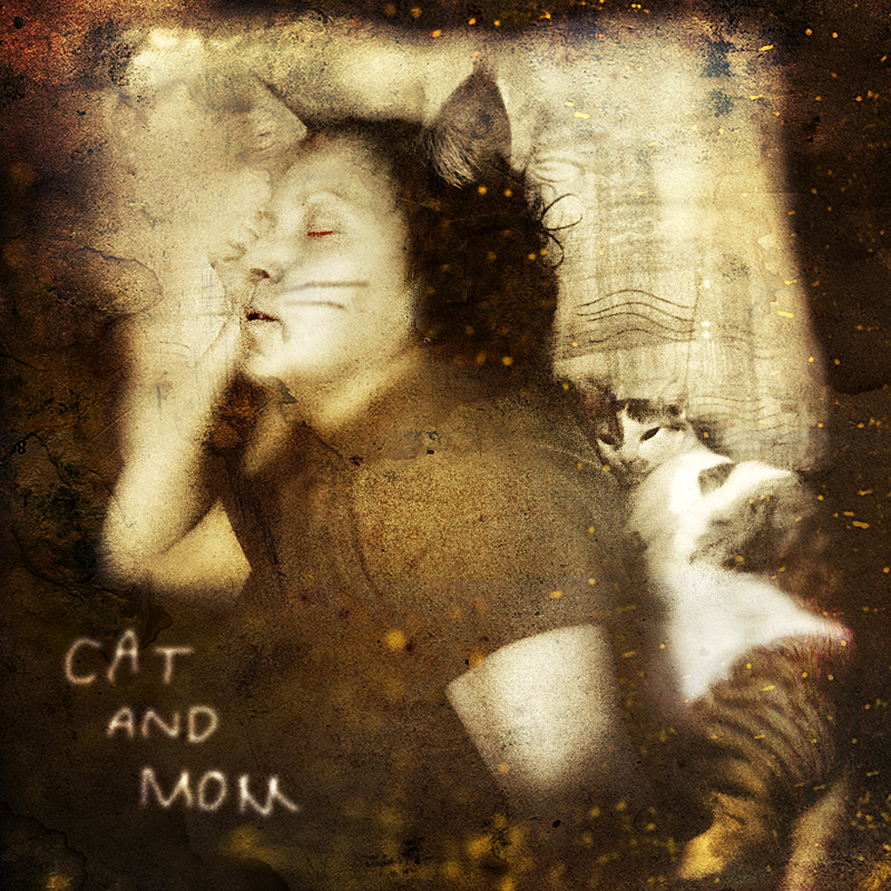 cat and mom by KalbiCamdan