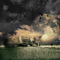 moon and friend by KalbiCamdan