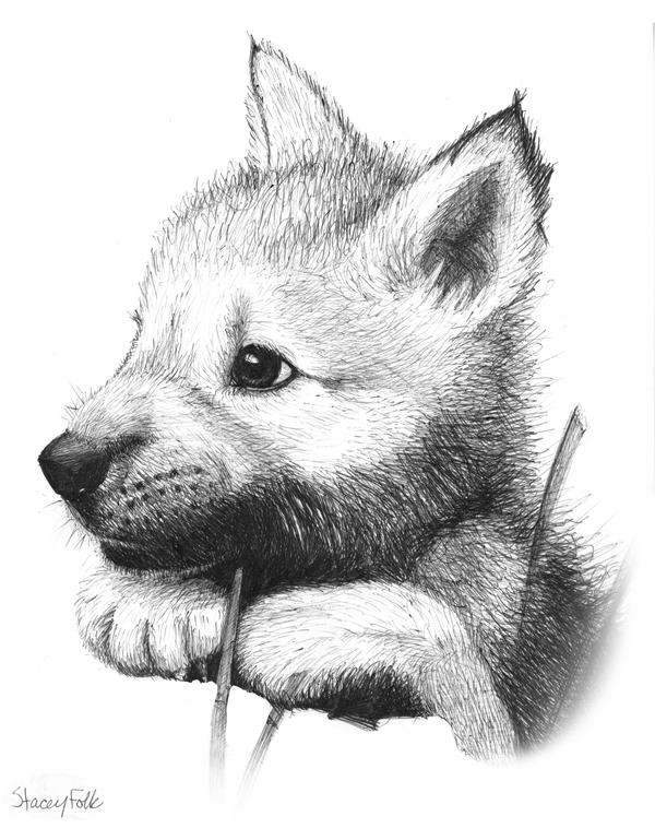 Wolf Pup V1 by iduck