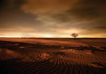 solitude by almiller