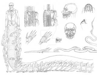 [Lucid] Victor Anatomy Sheet