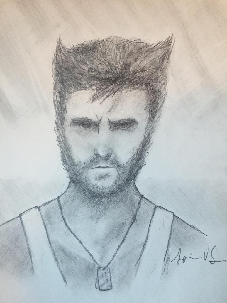 Wolverine by Storming777