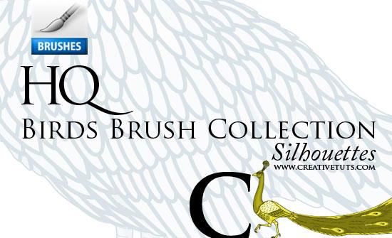 Photoshop Bird Brushes - C by Grasycho