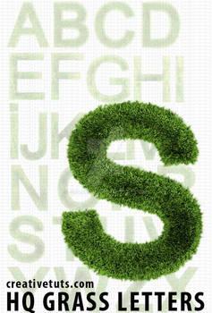 Grass Typography