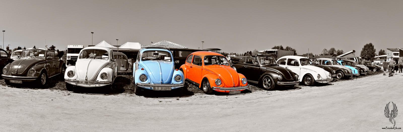 beetle04 by PeriodsofLife