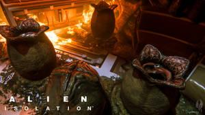 Ai 156 (Alien Isolation)