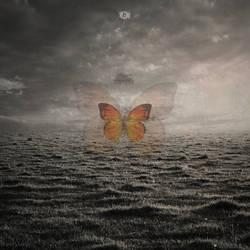 Butterfly Effect by w1zzy