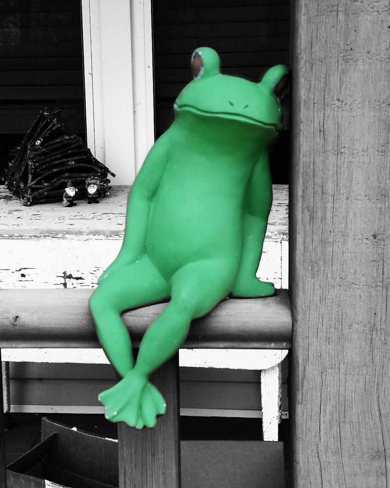 Lone Frogger by FoxyDivaArtist