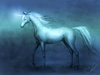 The Unicorn by sonerilA