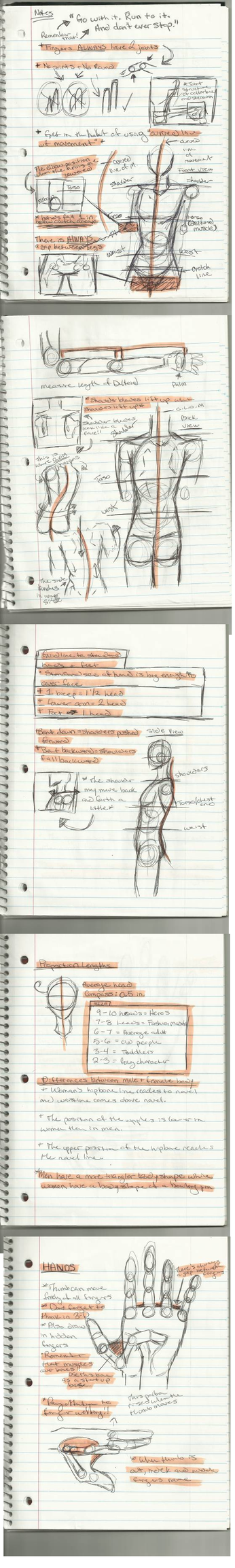 My Anatomy Notes by edwardsuoh13