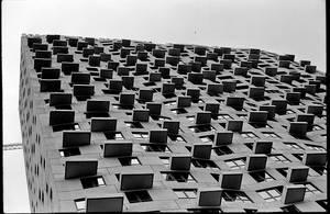 black and white negative film