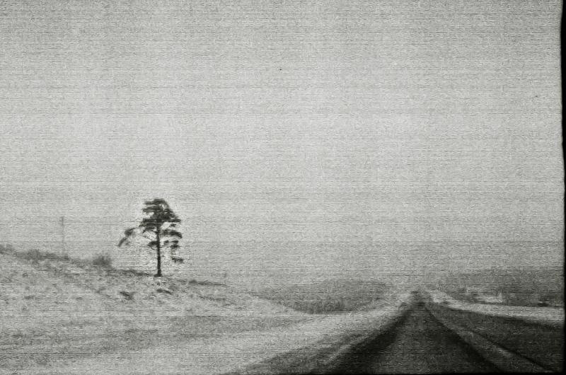 loneliness by choeba