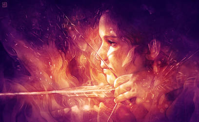 Catching Fire by escume