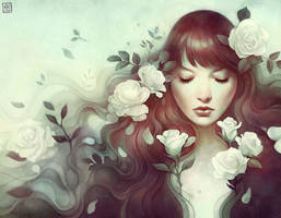 The Candor of the Rose by escume
