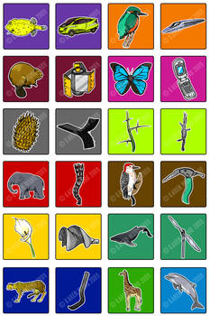 Biomimicry Cards