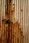Rusty Tin II