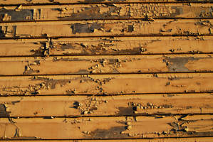 Wood Paint Peeling II by LogicalXStock