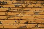 Wood Paint Peeling II