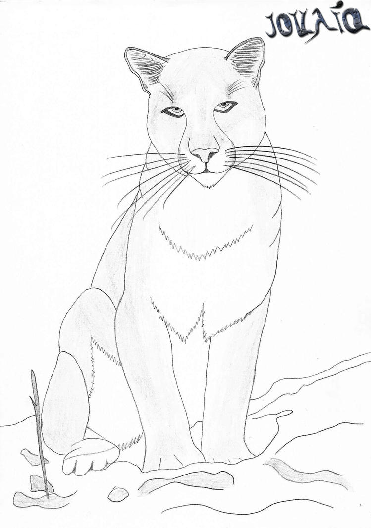 coloring pages mountain lion - photo #26