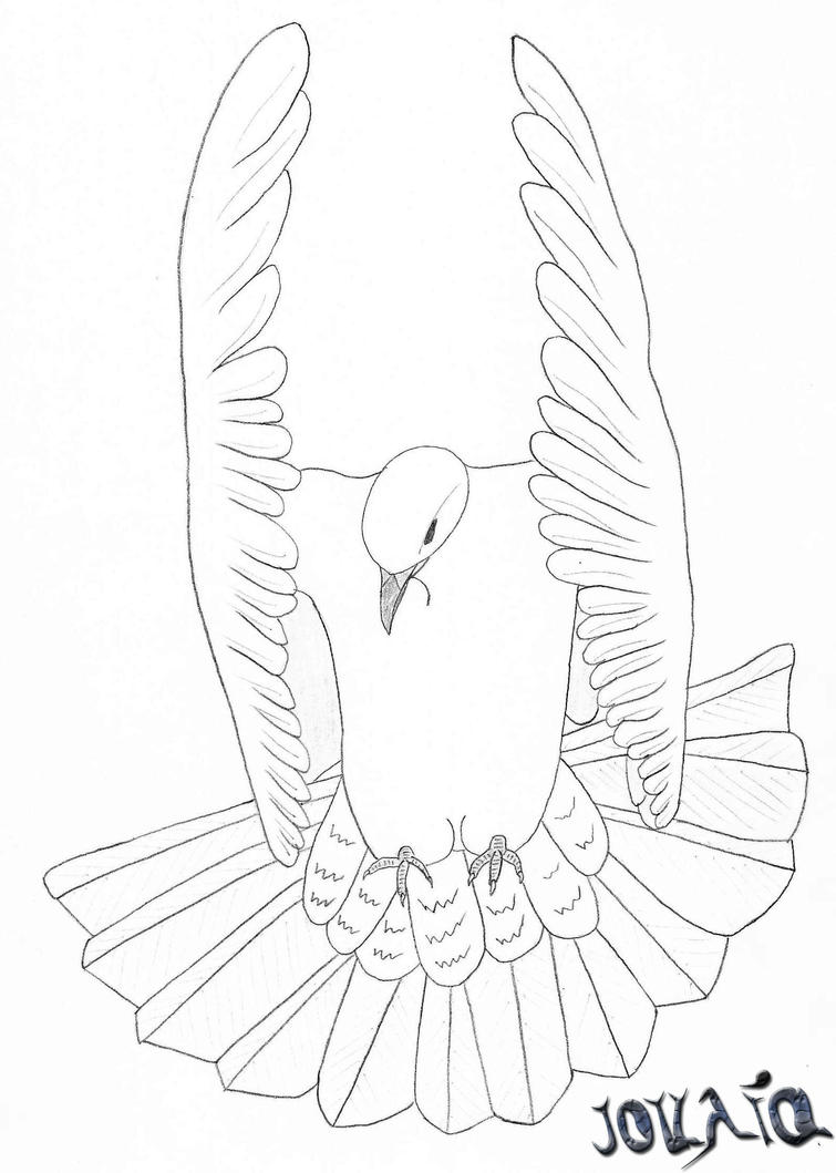 White Doves Drawings White Dove Drawing