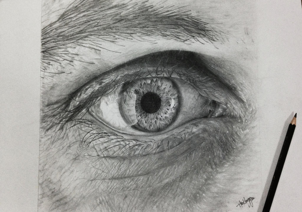 Dinotomic eye competition entry drawing pencil by sherlody