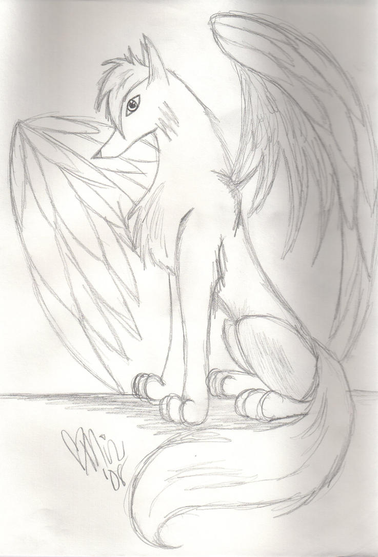 Winged Wolf Drawings