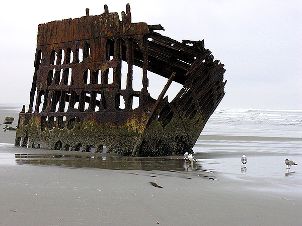 Wreck of Peter Iredale 0706 by photoguy17