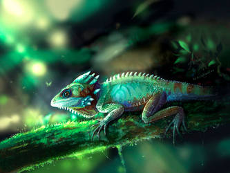 The lizard by Seliora