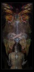 transcendence by melodicraven