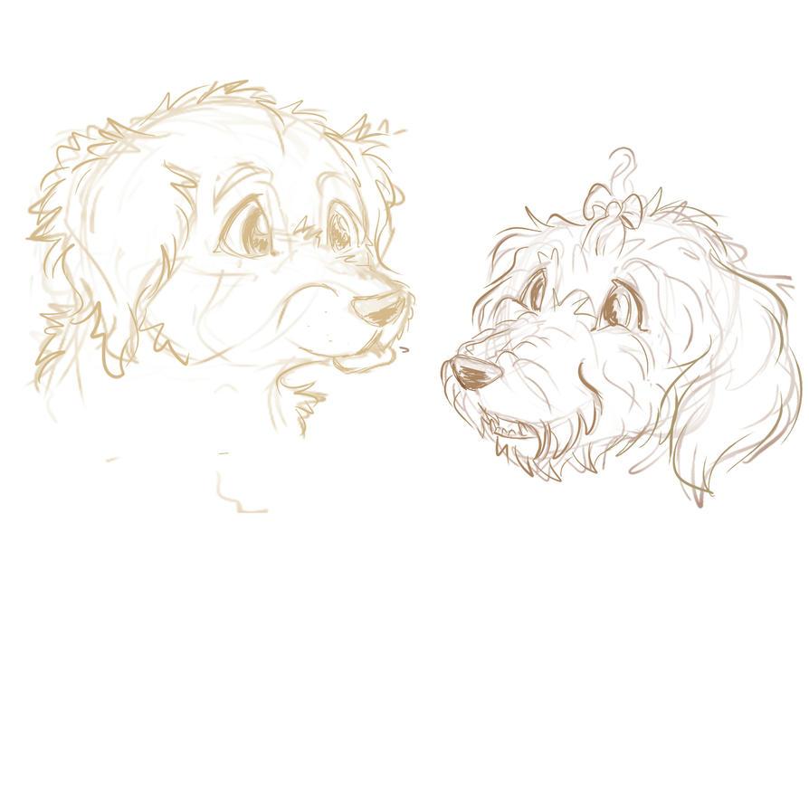 Dog sketches by PaintedHabitat