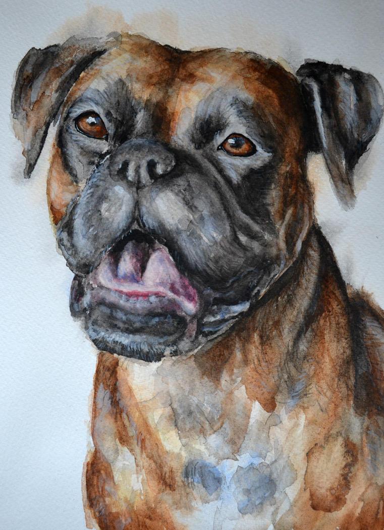 Boxer by PaintedHabitat