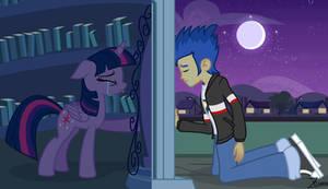 Twilight Sparkle x Flash Sentry - Equestria Girls